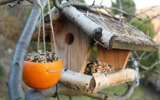 Необычные кормушки для птиц из дерева