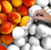 Персиковая краска для стен