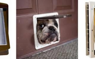 Дверь для собаки своими руками