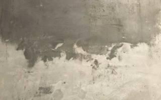 Сколько сохнет цементная штукатурка